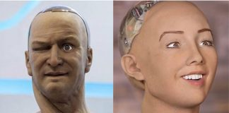 sam-and-sophia-robot